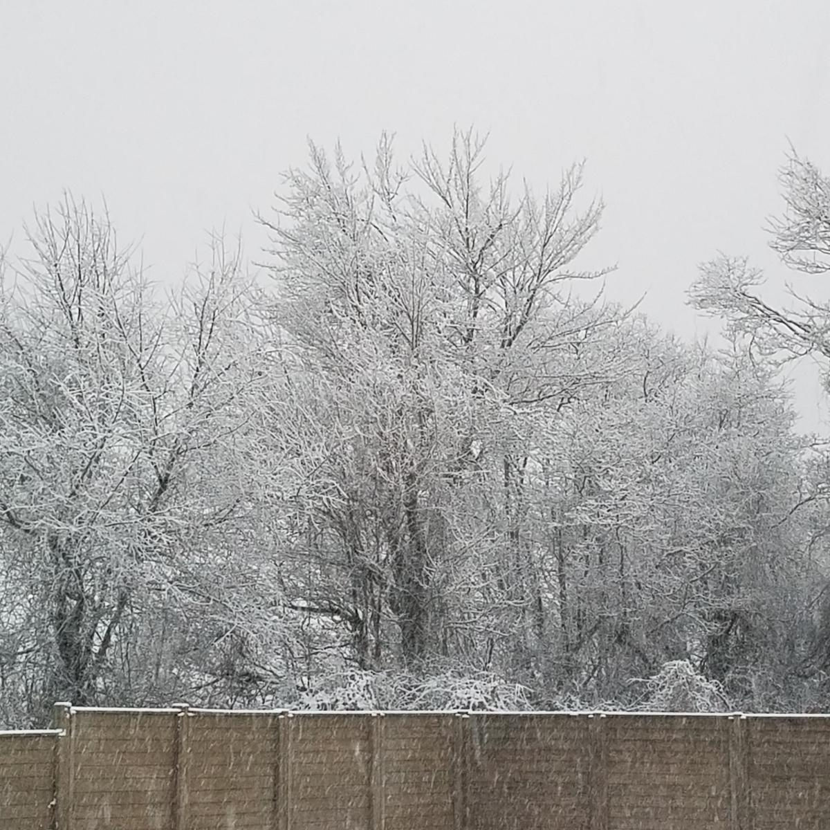 Weeknote 02 – Snow mischief